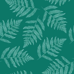ferns in spruce blue