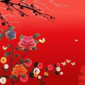 little geisha cherry blossom