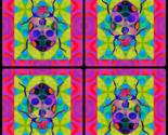 Rbeetle_collage_2_thumb