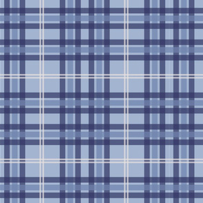 Wintry Plaid
