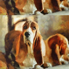 soulful expression of a basset