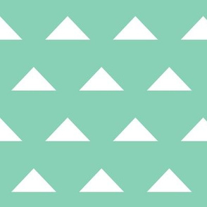 Triangles - Mint and White by Andrea Lauren