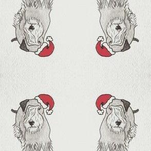 Cesky Santa-ch