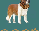 Rsaint_bernard_with_barrel_for_fabric_thumb