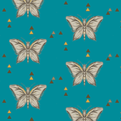 butterfly turquois