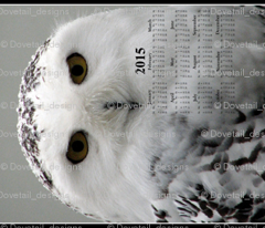 2015 Calendars - Celtic Snowy Owl