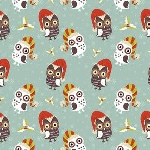 Winter Owls - Owls