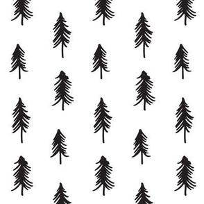 Pine - mono