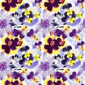 Spring Preserved Violet