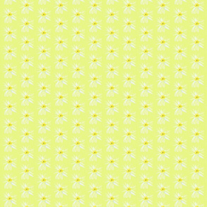 Little Daisies White-chartreuse