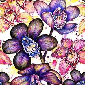 Black Orchids