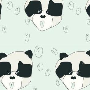 vivi_panda