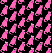 cat in pink