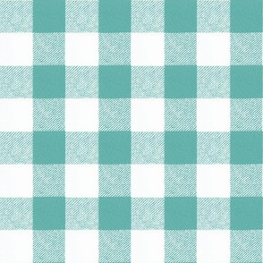 "1"" Wool Buffalo Check in Aqua"