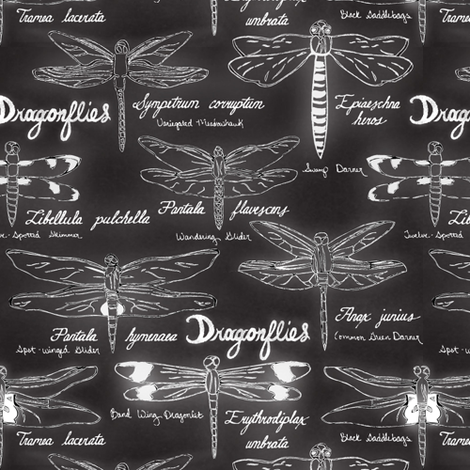 Dragonfly Board