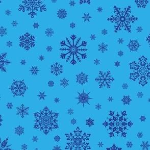 Snowflakes Dk Blue on Lt Blue