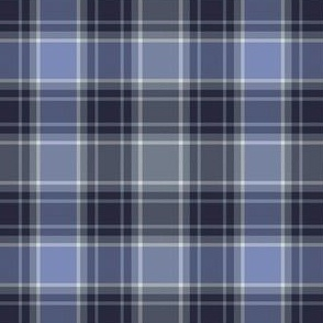 Grey and Blue Tartan
