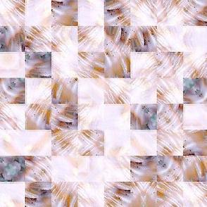 Snail Shell -   Zoom Blur