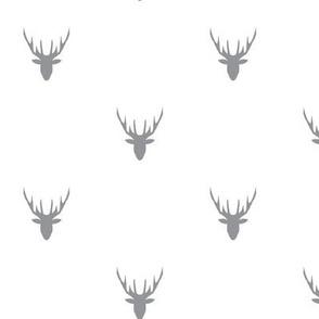deer grey
