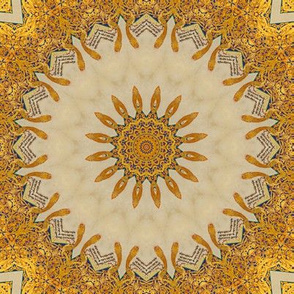 Gold and Blue Sunburst Illuminated Manuscript
