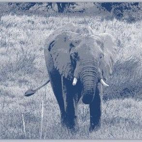 Blue Print Elephant!