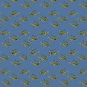 Alligator on Blue