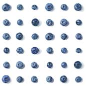 blueberry polka dots on white