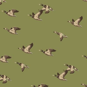 Flying ducks in green