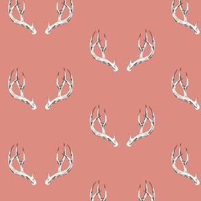 Whitetail deer antlers in rose