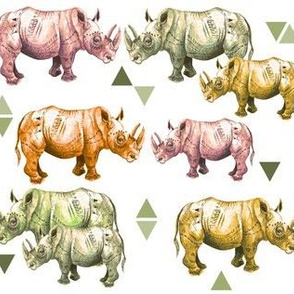 Warm Rhinos and Triangles