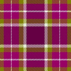 Magenta haze plaid