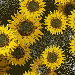 Fibonacci's Sunflowers
