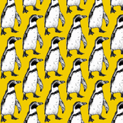 penguin yellow