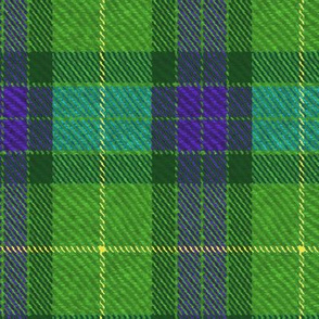 Classic Tartan in Green and Purple