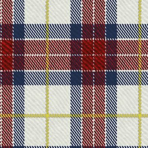 Classic Tartan in Red and Blue