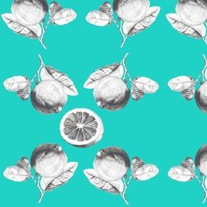 citrus_radial_turquoise
