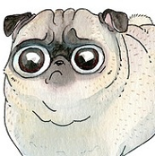 The Pug Stare