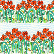 Rows of Poppies