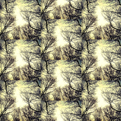 Winter Trees Toile