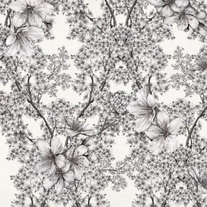white-blossoms-2