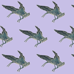 Flying curlew lilac
