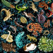 reptilesand amphibiansfabric