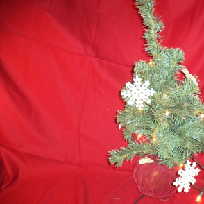 KSS-Christmas Fabrics