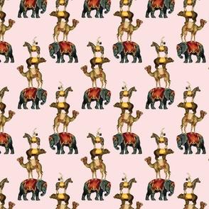 circus_pink