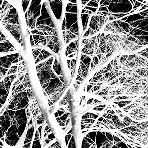 The Tree Lace ~ White and Black ~ Large
