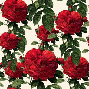 Redoute Riot of Roses ~True Blue Red Roses on Cream ~ Shan's Big Day