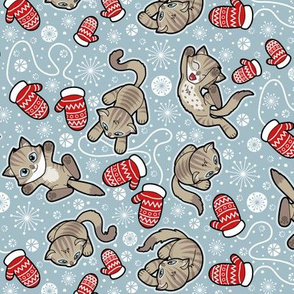 Kittens and Mittens