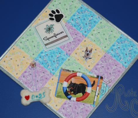 Agility hearts and paws - patchwork small