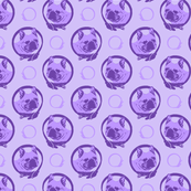 Collared French Bulldog portraits - purple