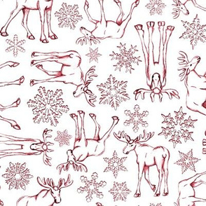 Moose and snowflakes